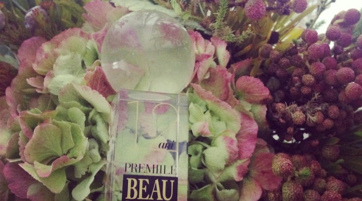 Globul meu de cristal