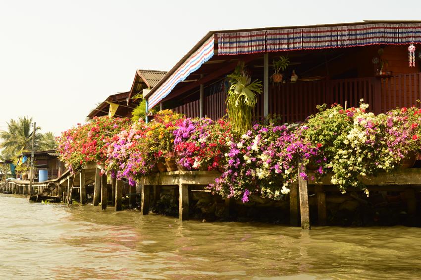 thailand 2014 - 158
