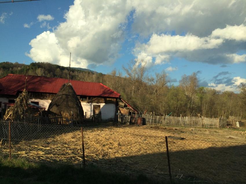 Valea cu Pesti-24