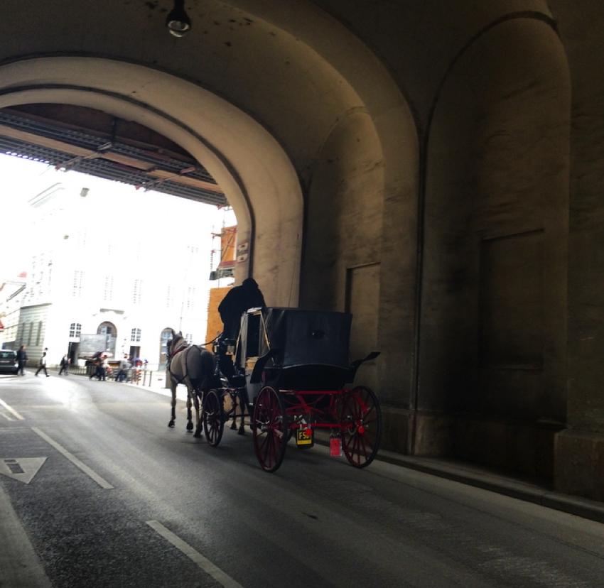 Viena Aprilie 2014-05