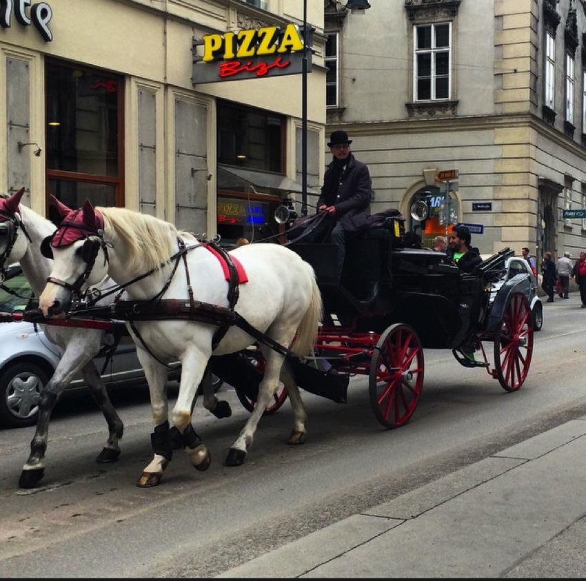 Viena Aprilie 2014-46