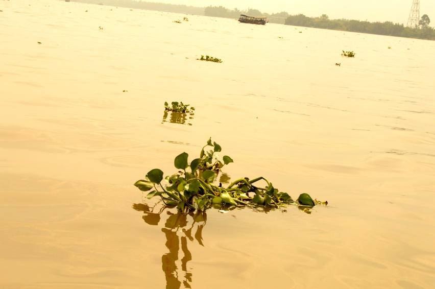 Laura Cosoi Delta Mekong-04