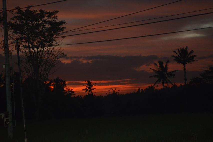 Laura Cosoi  Bali-09