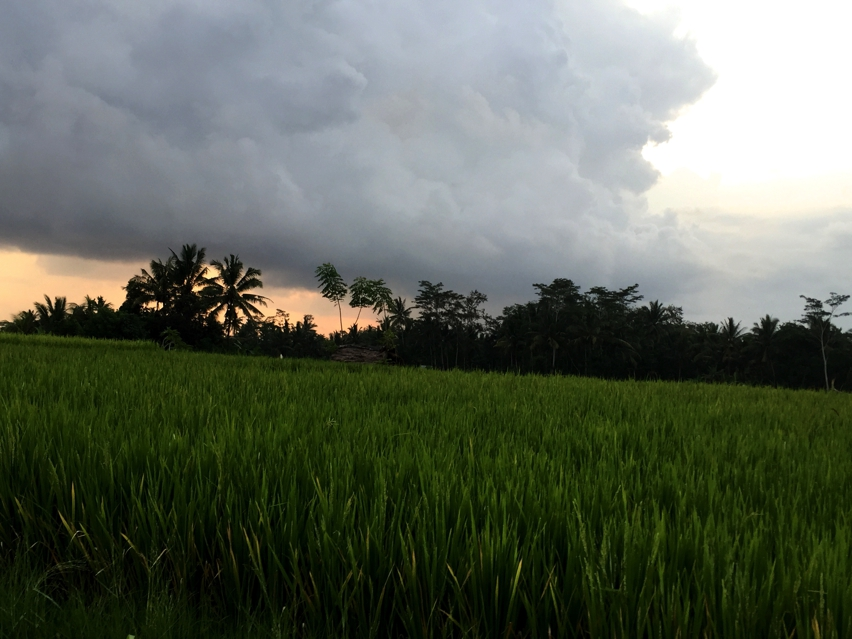 Laura Cosoi  Bali-44