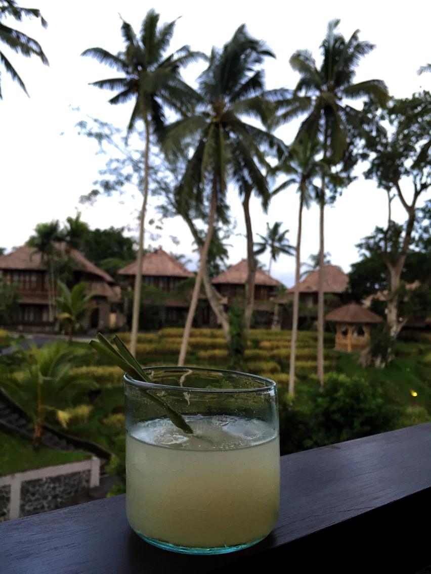 Laura Cosoi  Bali-56