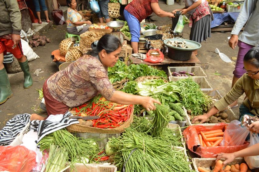 Laura Cosoi  Bali Piata-08