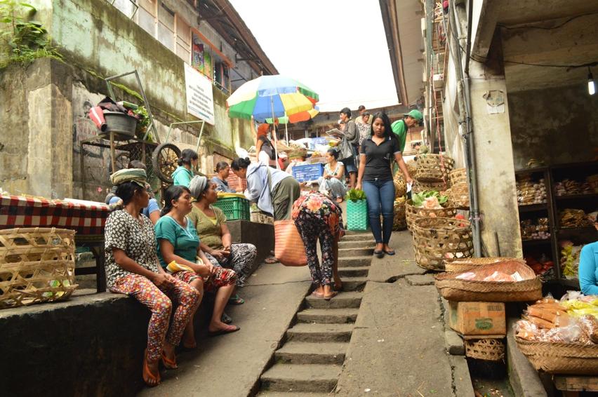 Laura Cosoi  Bali Piata-10