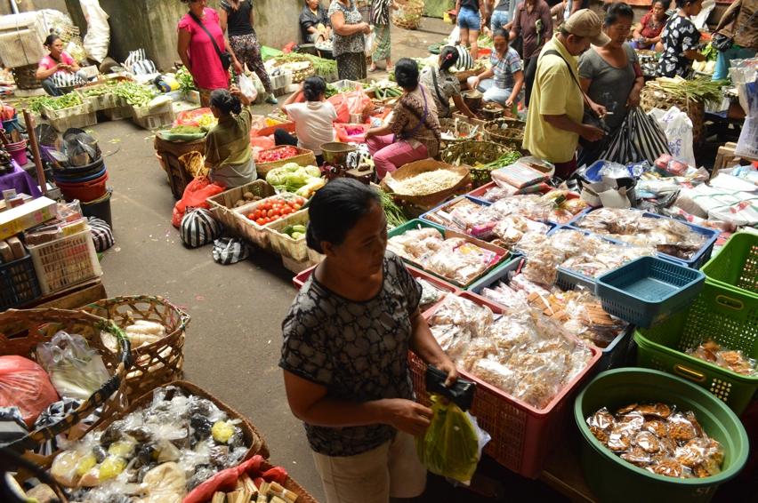 Laura Cosoi  Bali Piata-15