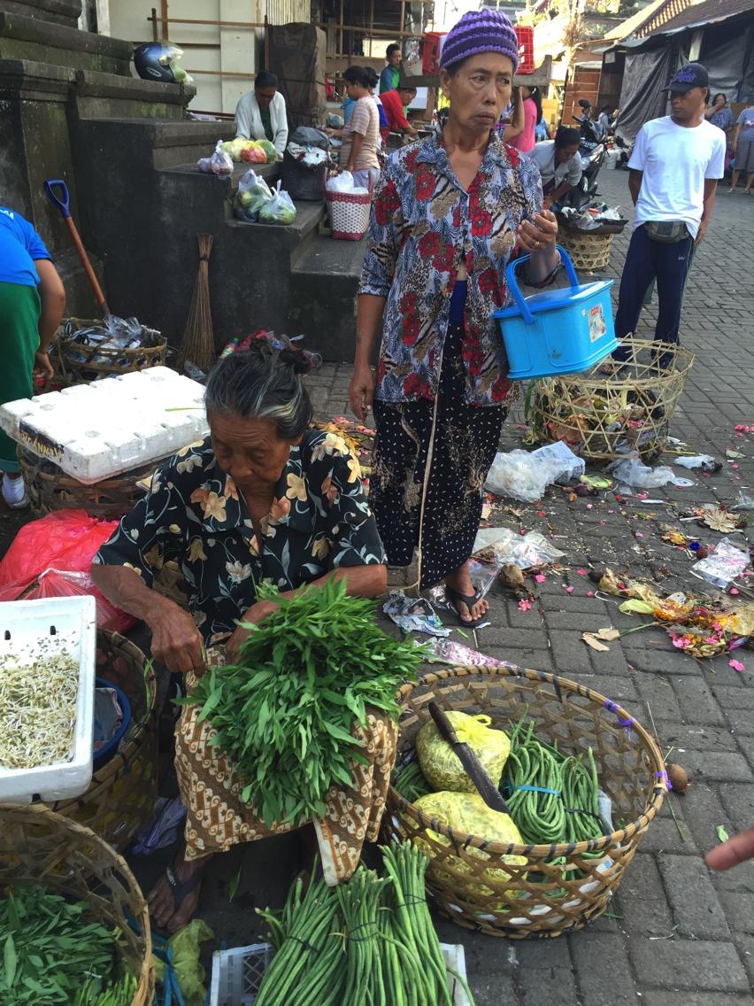 Laura Cosoi  Bali Piata-25