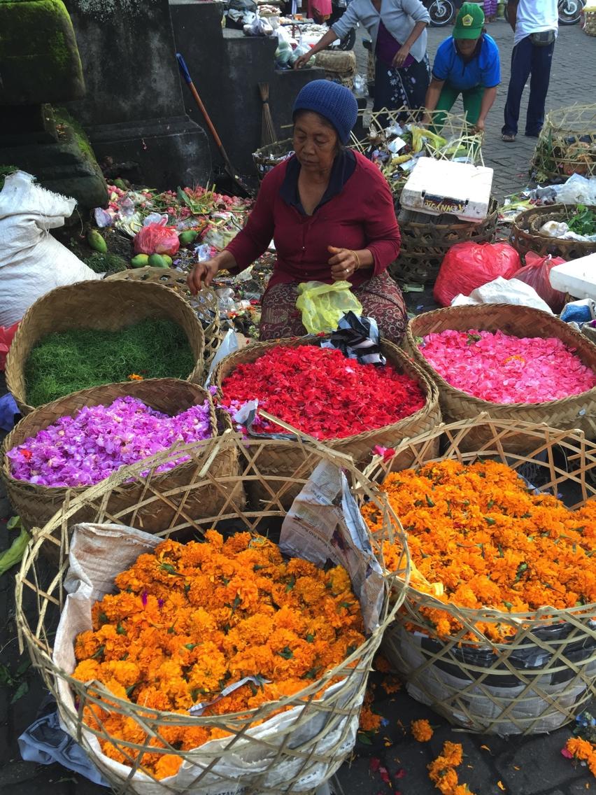 Laura Cosoi  Bali Piata-26