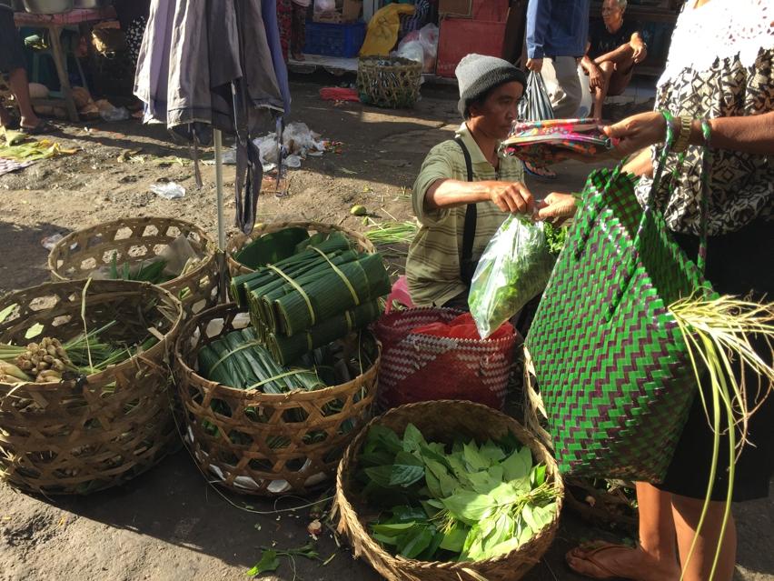Laura Cosoi  Bali Piata-30