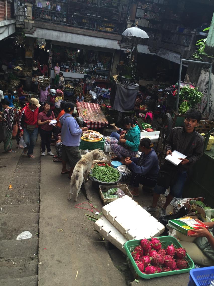 Laura Cosoi  Bali Piata-32