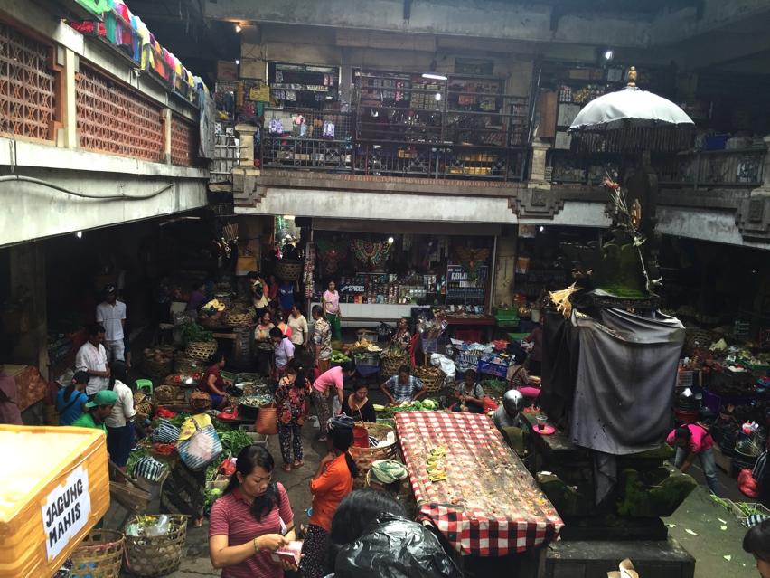 Laura Cosoi  Bali Piata-33