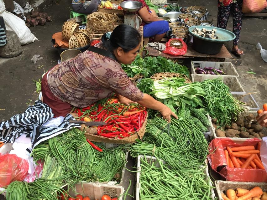 Laura Cosoi  Bali Piata-35