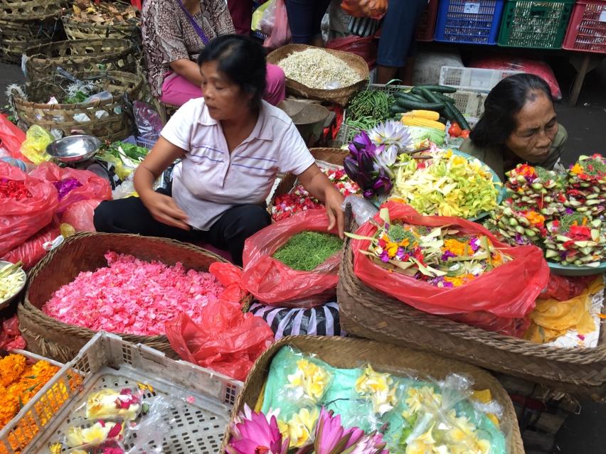 Laura Cosoi  Bali Piata-37