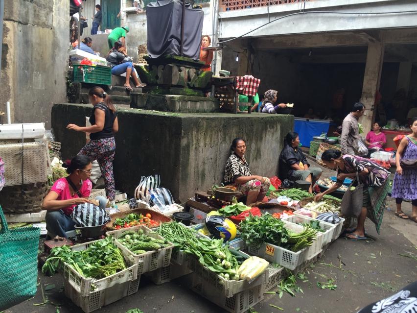 Laura Cosoi  Bali Piata-40