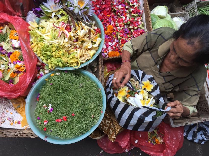 Laura Cosoi  Bali Piata-41