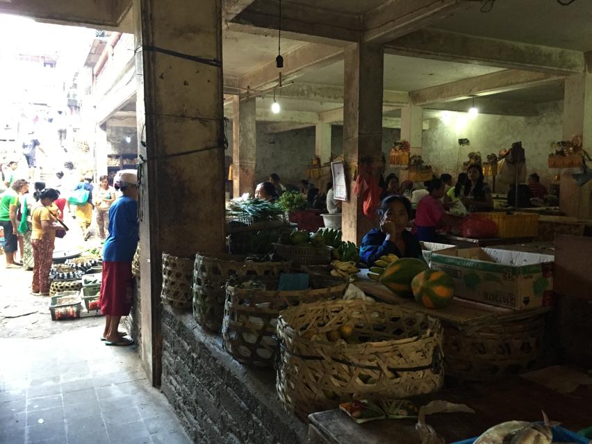 Laura Cosoi  Bali Piata-50
