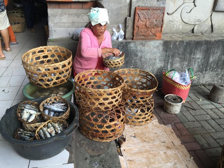 Laura Cosoi  Bali Piata-59