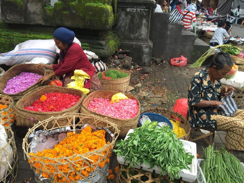 Laura Cosoi  Bali Piata-64