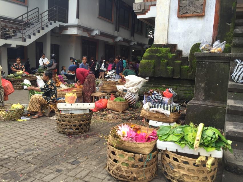 Laura Cosoi  Bali Piata-66