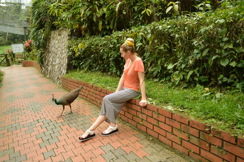 Laura Cosoi  Kuala Lumpur-15