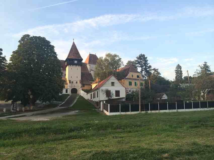 Laura-Cosoi-Coslariu-si-Bazna-32