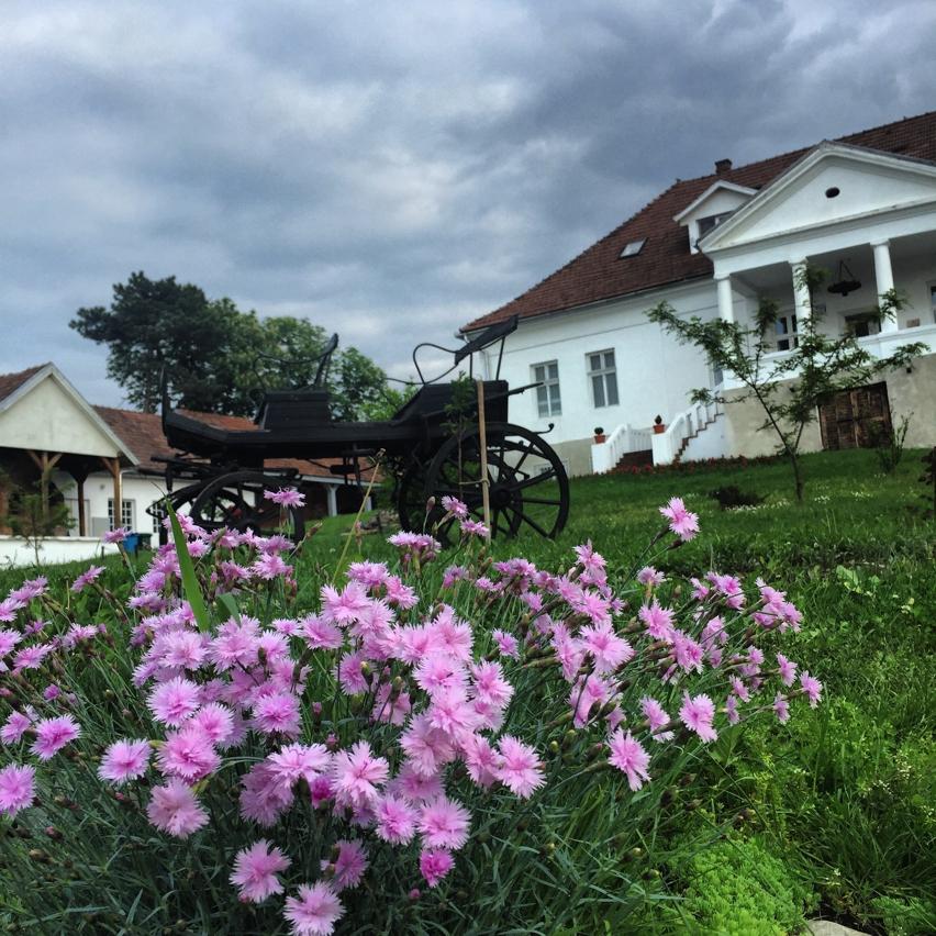 Romania: Butoiul Sasului