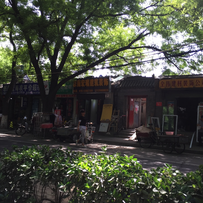 Laura Cosoi Beijing-02