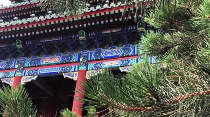 China: Beijing (Orasul Interzis si Palatul de Vara)