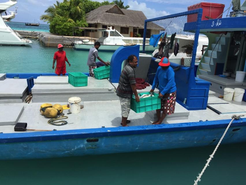 Laura Cosoi Maldive-60