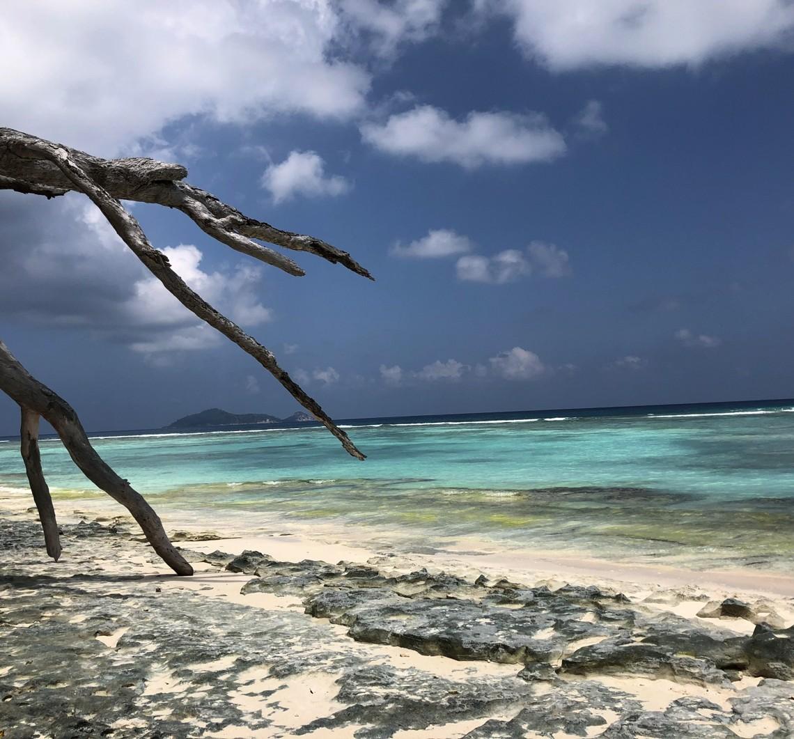 Seychelles: Insula Silhouette