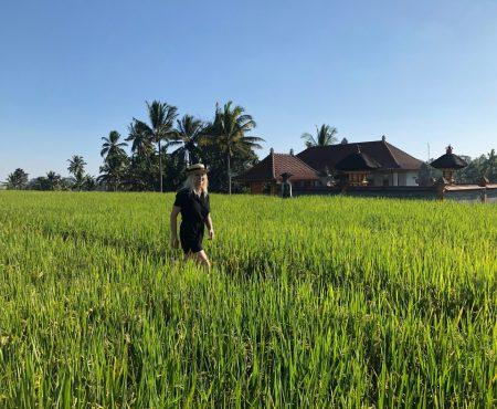 Bali: Ubud (Orezarii, Safari Park si Monkey Forest)